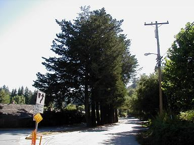 Cypress Row, Granite Creek Road